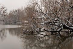 横向河冬天 库存图片