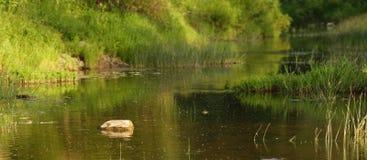 横向河夏天日落 库存照片