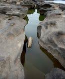 横向河 免版税图库摄影