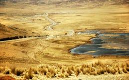 横向秘鲁 免版税库存图片