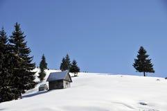 横向罗马尼亚冬天 免版税图库摄影