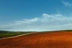 横向美丽如画农村 被犁的领域和葡萄园反对蓝天 库存图片