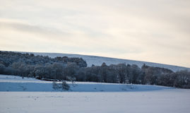 横向苏格兰人冬天 免版税库存图片