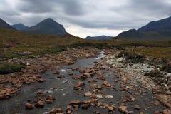 横向苏格兰人 免版税库存图片