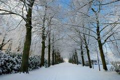 横向荷兰冬天 库存图片