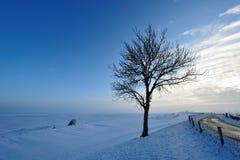 横向荷兰冬天 免版税图库摄影