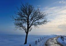 横向荷兰冬天 免版税库存照片