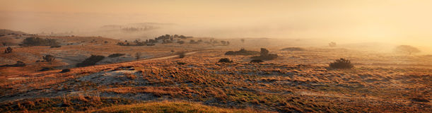 横向薄雾全景 免版税库存照片
