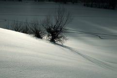 横向银色雪 免版税库存照片