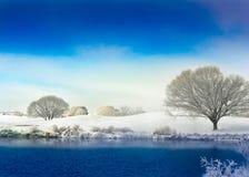 横向雪冬天 库存图片