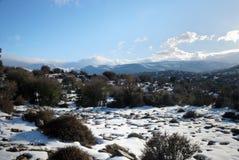 横向雪冬天 免版税库存照片