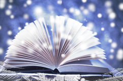 横向雪多雪的故事结构树冬天 打开在木多雪的蓝色背景的书 库存照片