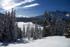 横向雪 免版税库存图片