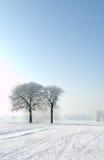 横向风景冬天 库存图片