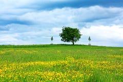 横向风景苏格兰人 免版税库存图片