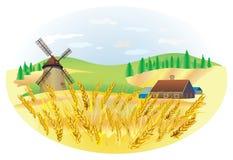 横向麦子 免版税库存照片