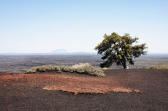 横向: 月亮的火山口 免版税库存照片