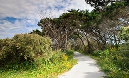 横向Ocracoke北卡罗来纳 库存图片