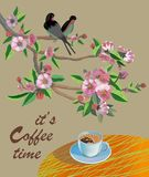 横幅春天叶子开花的樱花 在桌上的咖啡在春天 时刻喝咖啡 皇族释放例证
