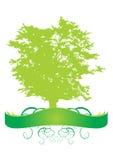 横幅查出的结构树 免版税图库摄影