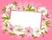 横幅美丽的花束百合 免版税库存图片
