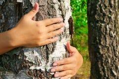 横幅蝴蝶庆祝的逗人喜爱的日环境开花瓢虫映射世界 拥抱树干的女孩手 拿着桦树 团结的概念与自然的 免版税库存图片