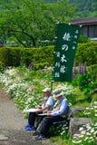 横幅,忍野,日本 免版税库存照片