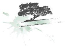 横幅oack结构树 库存图片