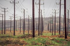 横渡一个领域的输电线在Ptolemaidaa希腊 免版税库存图片