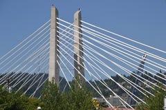 横渡公共交通桥梁图象2,波特兰,俄勒冈的Tillicum 库存图片