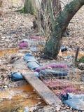 横渡在棕色小河森林地秋天的木板条下落 免版税图库摄影
