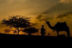 横渡沙丘的骆驼贸易商的剪影在太阳期间 库存图片