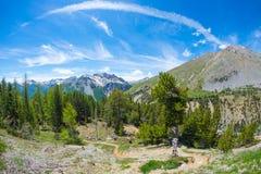横渡高处有积雪覆盖的山脉的供徒步旅行的小道针叶树森林地在背景和喜怒无常的蓝天中 Queyras Regi 免版税图库摄影