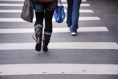 横穿线路步行者斑马 图库摄影