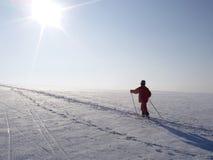 横越全国的滑雪者 库存图片
