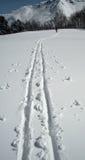 横越全国的滑雪者轨道 免版税库存照片