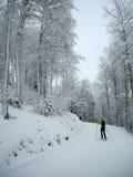 横越全国的滑雪者 免版税库存图片