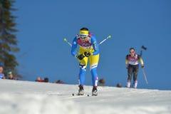 横越全国的滑雪 库存照片