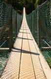 横跨一个峡谷的一个长的狭窄的段落在冰川国家公园附近 免版税库存图片