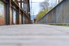 横跨一座老木板走道桥梁的低角度视图 免版税库存照片