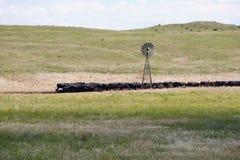 横跨内布拉斯加Sandhills牛国家的旅行 免版税图库摄影