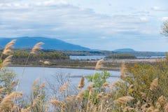 横跨哈得逊河的Catskill山景城,北部NY 免版税图库摄影