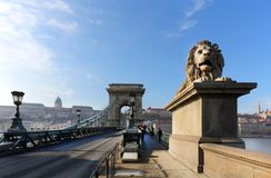 横跨多瑙河的著名铁锁式桥梁 布达城堡在背景,布达佩斯,匈牙利,欧洲中 免版税图库摄影