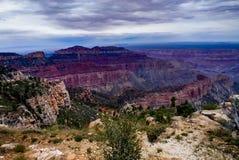 横跨大峡谷北部外缘亚利桑那的看法 免版税图库摄影