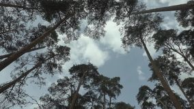 横跨天空的云彩浮游物 股票视频