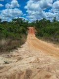 横跨山的路在一个国家公园在巴西 库存图片