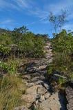 横跨山落后在一个国家公园在巴西 库存照片