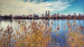 横跨杰奎琳・肯尼迪水库的一个惊人的秋天视图 免版税库存照片