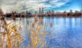 横跨杰奎琳・肯尼迪水库的经典秋天场面- NYC -中央公园 库存图片