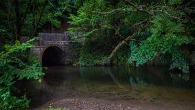 横跨框架河的老桥梁在一小镇在多西特,英国 库存图片